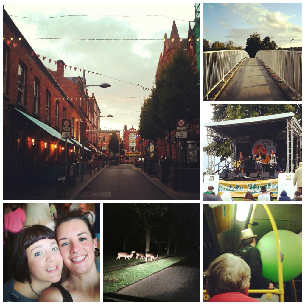 instagram images. fade street. deer. phoenix park. bridge. live music stage. photography.