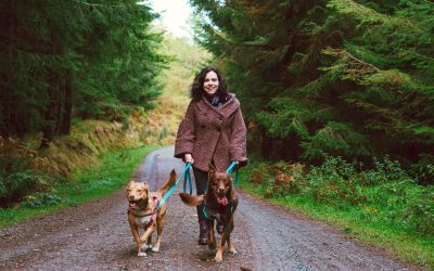 HOW TO GET OVER YOURSELF IN FRONT OF THE CAMERA & CASE STUDY: AUDREY, PAWTRAIT IRELAND